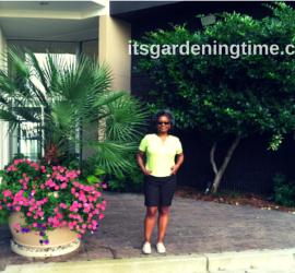 Passionate Gardener! how to garden beginner gardener